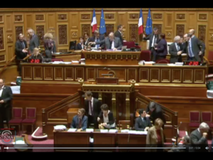 French Senate extends state of emergency