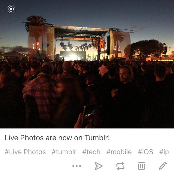 tumblr live photos