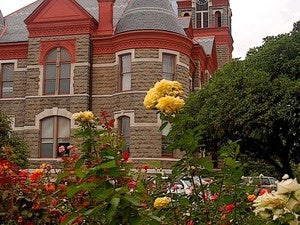 pulaski county courthouse little rock arkansas roses