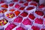 roses flowers bouquets market